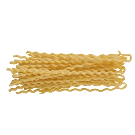 Canule White Pasta